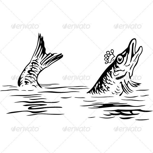 King Fish - Animals Characters