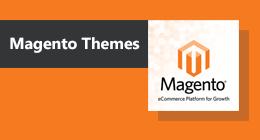 Premium Magento Themes