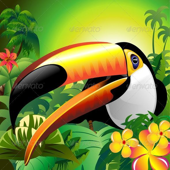 Toucan Close Up on Green Jungle - Animals Characters