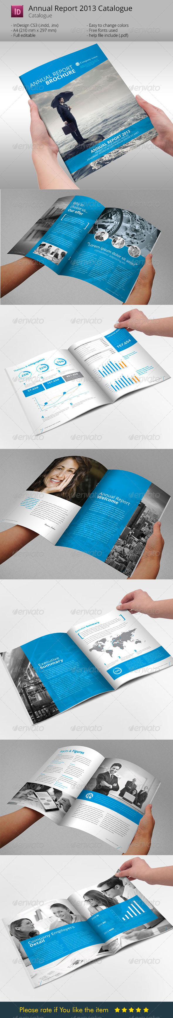 Annual report brochure indesign template by braxas for Indesign templates brochure