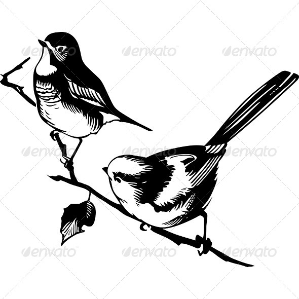 Birds on the Branch - Animals Characters