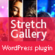 Stretch Gallery WordPress plugin
