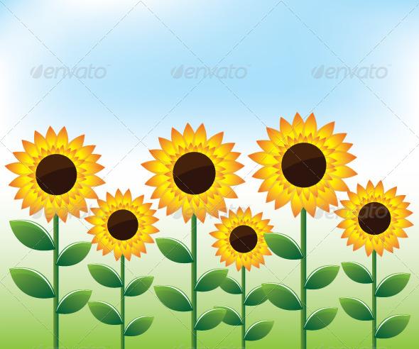 Sunflowers Landscape Background - Flowers & Plants Nature