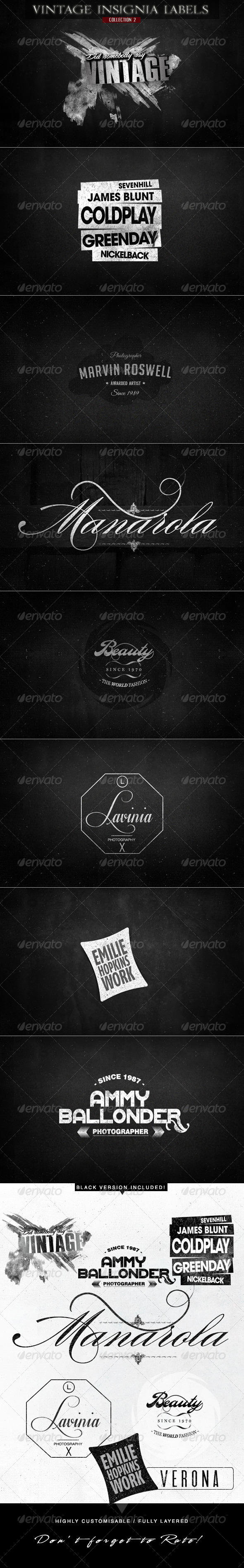 Vintage Insignia Labels for Logo & Branding v.2 - Badges & Stickers Web Elements