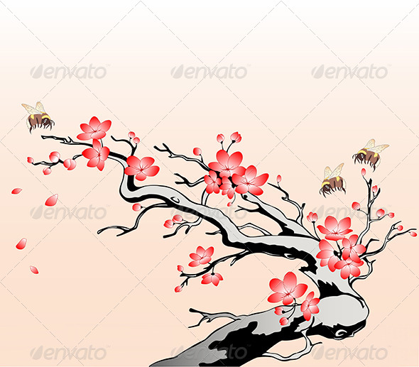 Flowering Cherry Branch - Flowers & Plants Nature