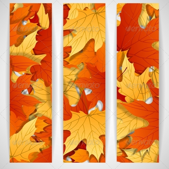Autumn Leaves Background - Seasons Nature