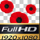 Remembrance Day - VideoHive Item for Sale
