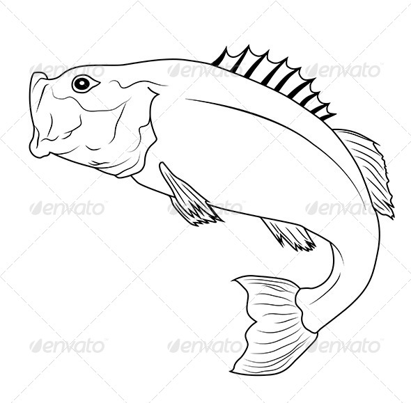 Jumping Fish - Animals Characters