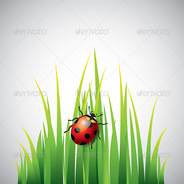 Ladybug on Green Grass Vector Background - Flowers & Plants Nature