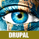 Surreal - One Page Parallax Drupal Theme - ThemeForest Item for Sale