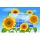 Download Vector Green Energy Eco Concept