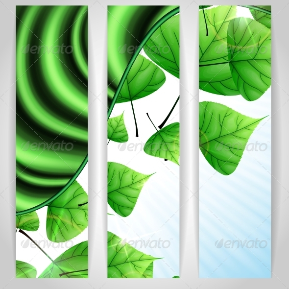 Eco Green Background with Leaves. - Flowers & Plants Nature