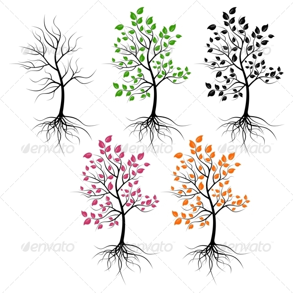 Trees. - Flowers & Plants Nature