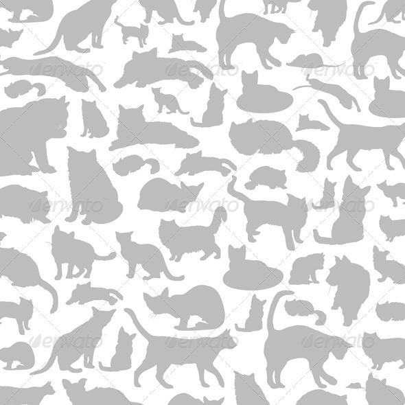 Cat Background - Animals Characters