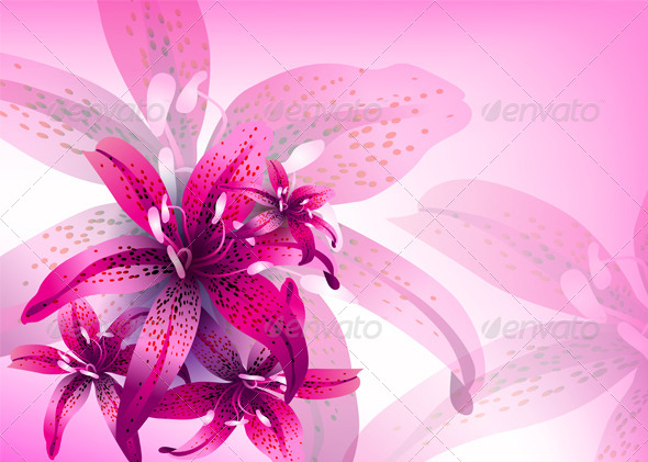Floral Vector Background - Backgrounds Decorative