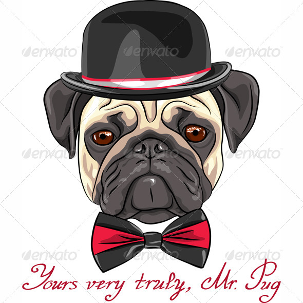 Vector Sketch Hipster Dog Pug Breed  - Animals Characters