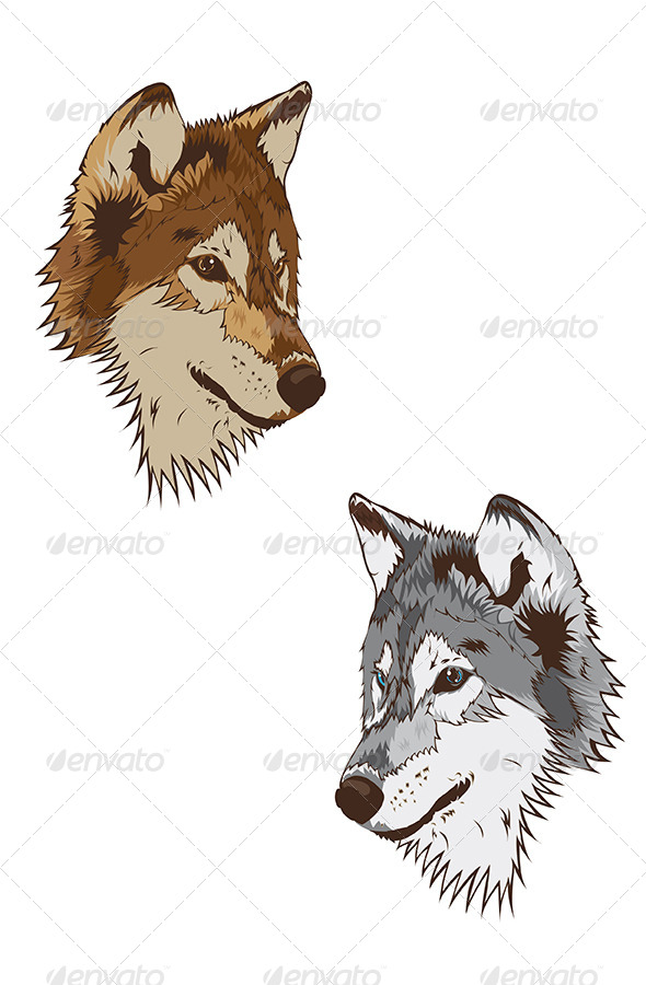 Wolf Mascot - Animals Characters