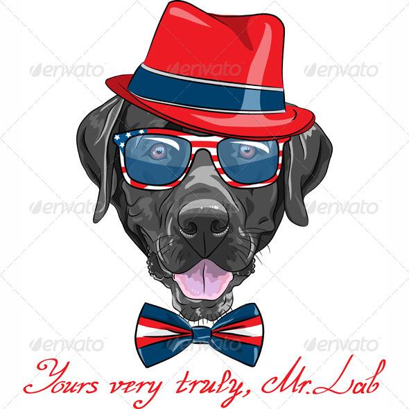 Vector Hipster Dog Labrador Retriever - Animals Characters