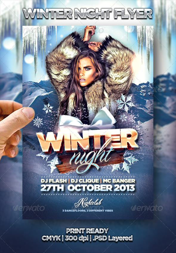 Winter Night Flyer - Events Flyers
