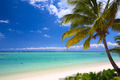 Beautiful tropical beach - PhotoDune Item for Sale
