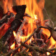 Burning Open Fire - VideoHive Item for Sale