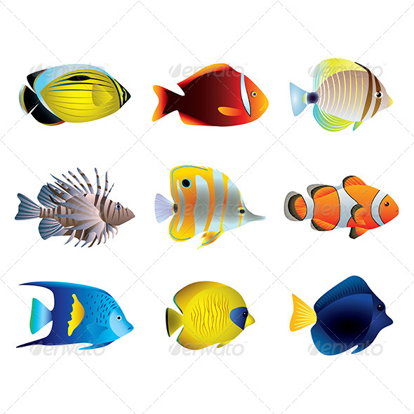 Tropical Fishes Vector Set - Animals Characters