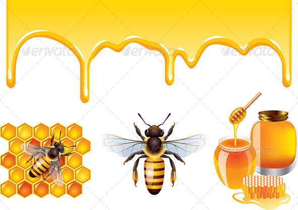 Bee Vector Set - Food Objects