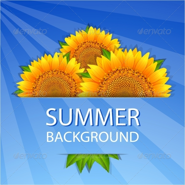 Summer Sunflowers Background - Backgrounds Decorative