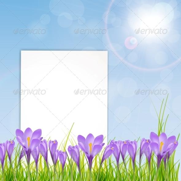 Vector Illustration of Crocus Flower - Birthdays Seasons/Holidays