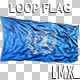 United Nations Loop Flag - VideoHive Item for Sale
