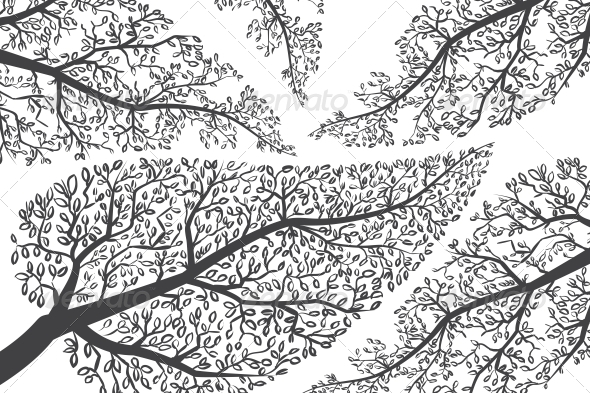 Branches Silhouettes - Backgrounds Decorative