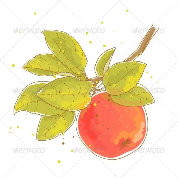Apple Branch - Food Objects