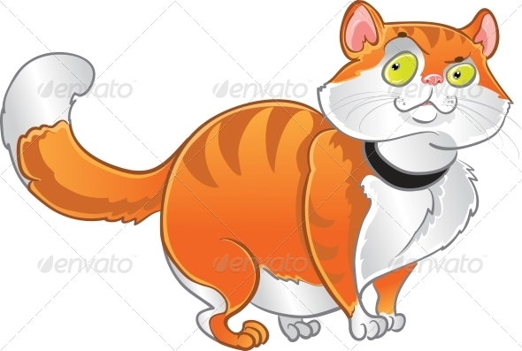Orange Fat Cat - Animals Characters