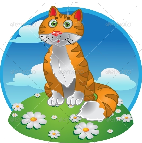 Orange Funny Sitting Cat on Color Background - Animals Characters