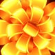 Golden Flowers 4K - VideoHive Item for Sale