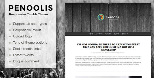 Penoolis - Responsive Tumblr Blog Themes