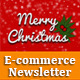 Christmas E-commerce Newsletter Template  - GraphicRiver Item for Sale