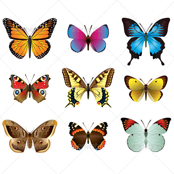Butterflies Photo-Realistic Vector Set - Animals Characters