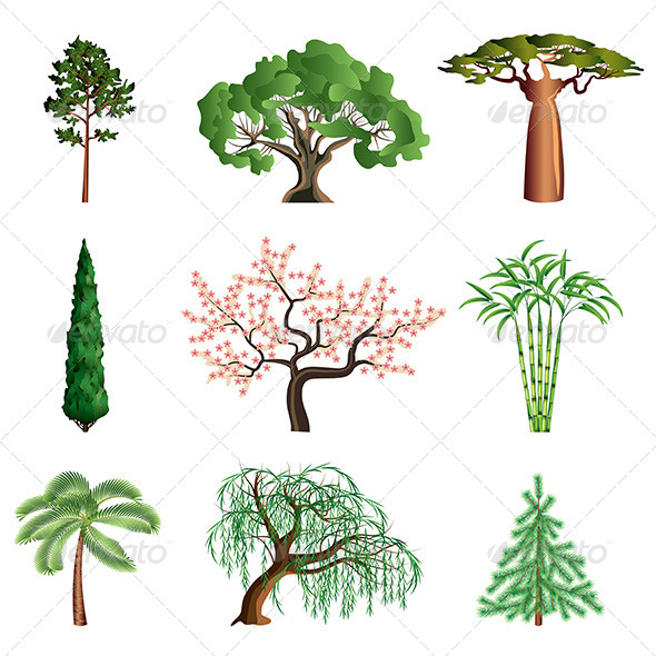 Trees Isolated on White Vector Set - Flowers & Plants Nature
