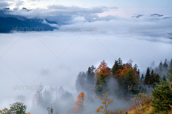 fog in Alps during autumn - Stock Photo - Images