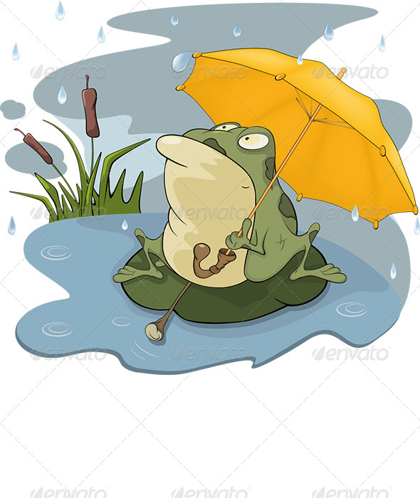 Frog and Rain Cartoon  - Animals Characters