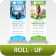 Corporate Roll-Up Banner Vol 4 - GraphicRiver Item for Sale