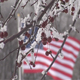US Flag With Snow - VideoHive Item for Sale
