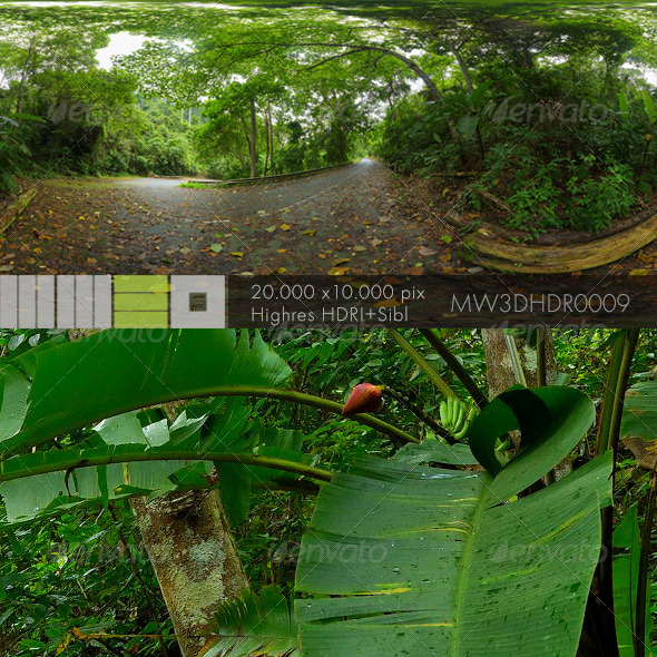 MW3DHDR0009 Abandoned Jungle Road in Thailand - 3DOcean Item for Sale