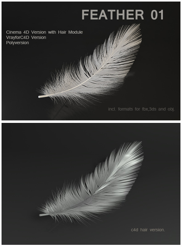Feather 01 - 3DOcean Item for Sale