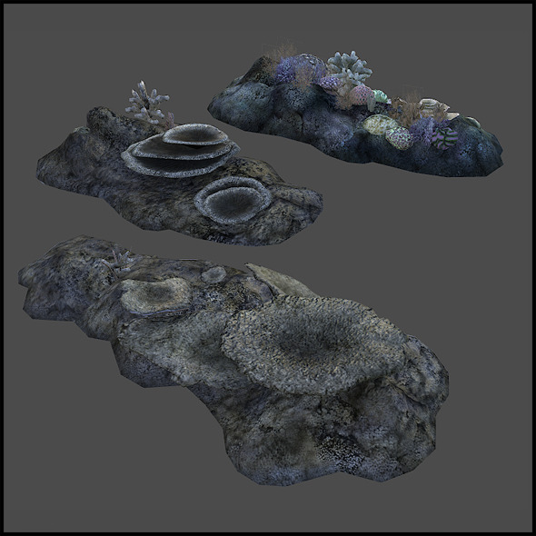 Coral Reef - 3DOcean Item for Sale
