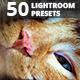 Animals Presets - Lightroom Presets - GraphicRiver Item for Sale