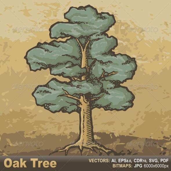 Oak Tree Sketch - Flowers & Plants Nature