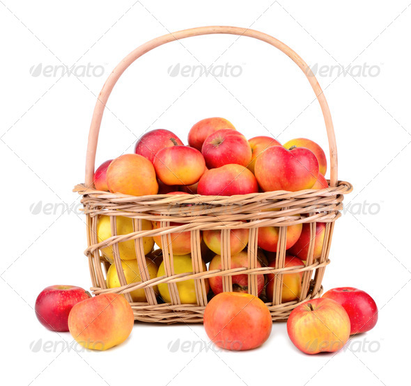 Ripe apples - Stock Photo - Images