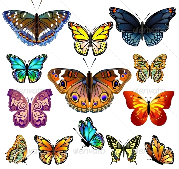 Set of Colorful Realistic Isolated Butterflies. - Flowers & Plants Nature